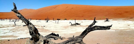 14 Day Namibia by Private Air
