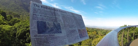 Table Mountain & Kirstenbosch Botanical Gardens (Guided)